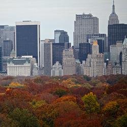 Cores & Estações em NY