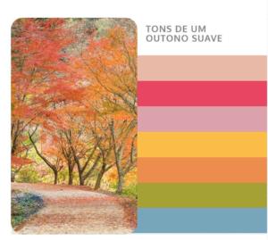 cartela outono suave